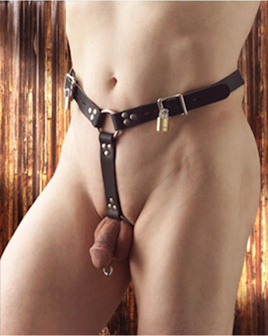 Strict Leather Premium Locking Leather Cock Ring And Butt Plug Harness